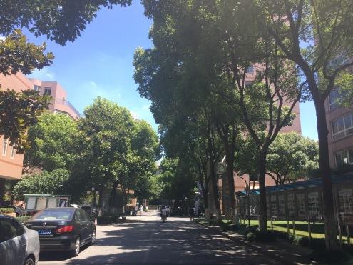 Hongkou campus SISU Shanghai